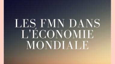 les FMN dans l'économie mondiale