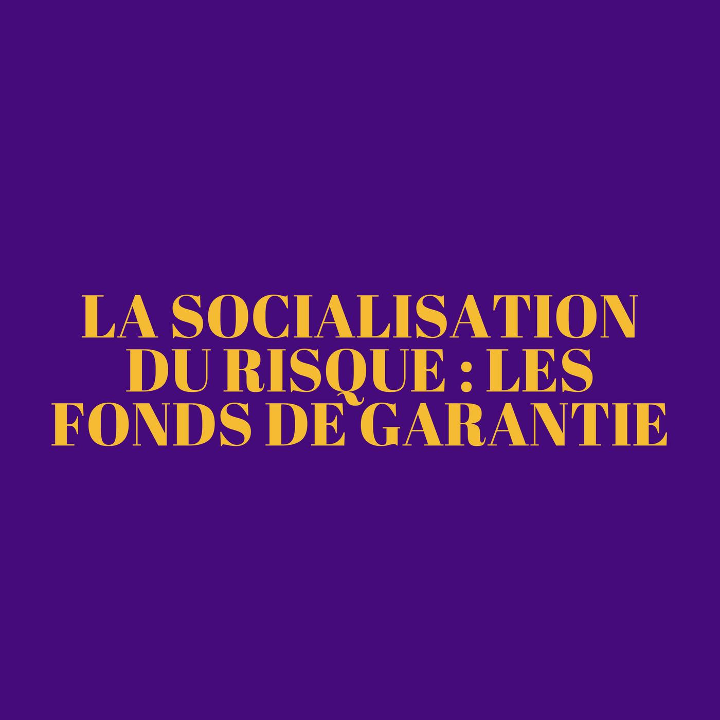 La socialisation du risque : les fonds de garantie