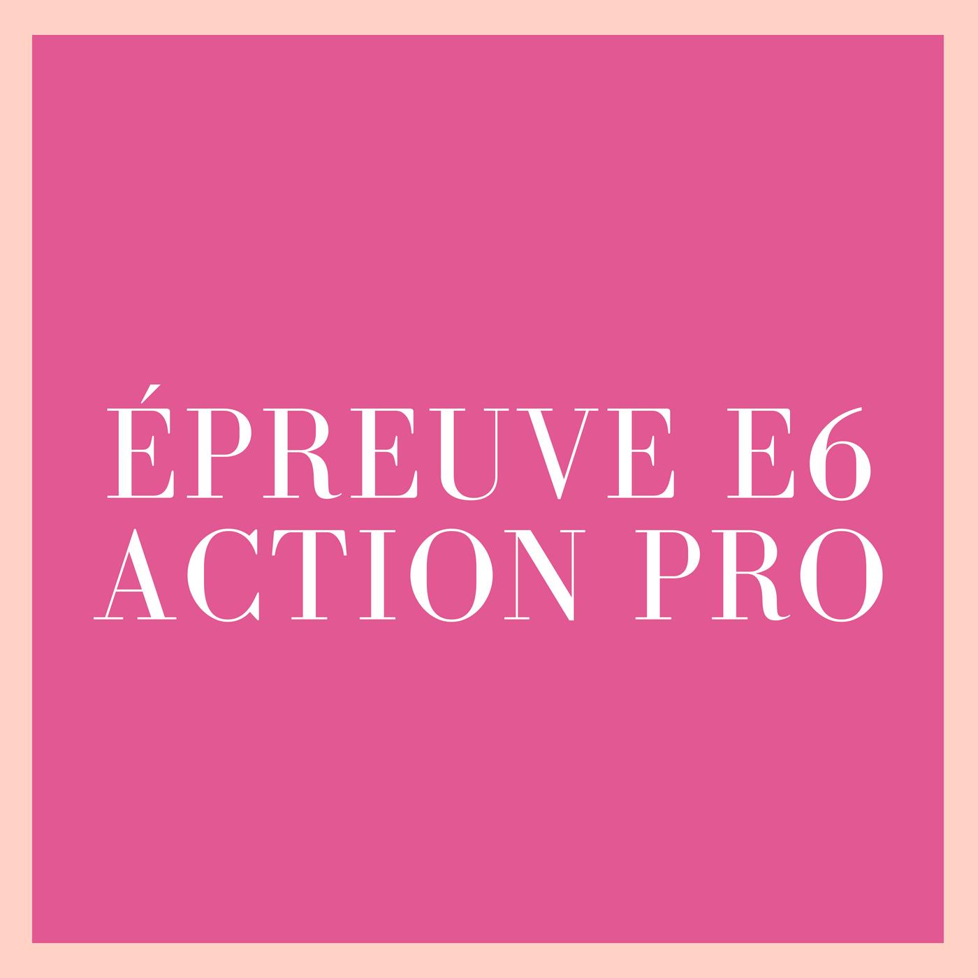 Epreuve E6 : action professionnelle