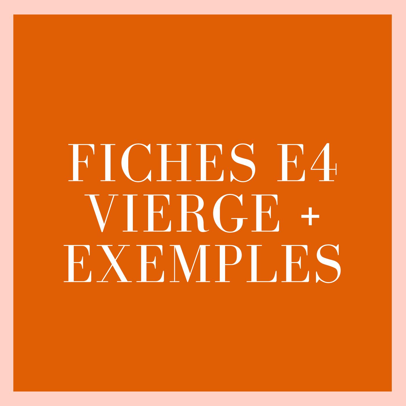 Fiche E4 vierge + exemples