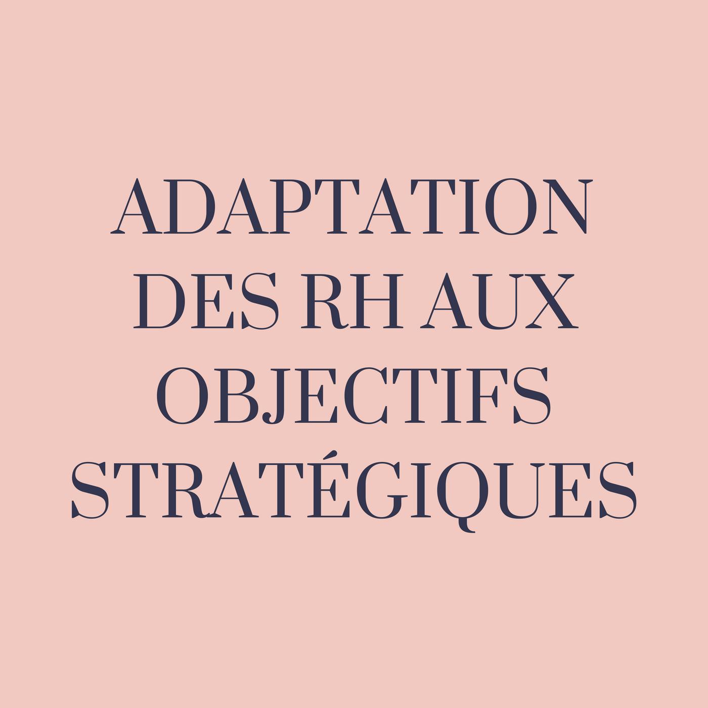L'adaptation des ressources humaines aux objectifs stratégiques